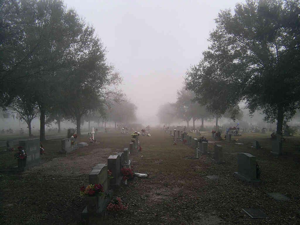 Zakład Pogrzebowy - żałoba