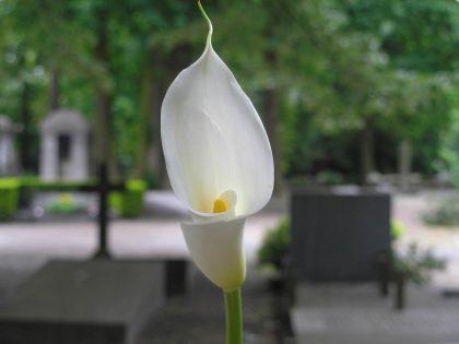 Memorial Warszawa