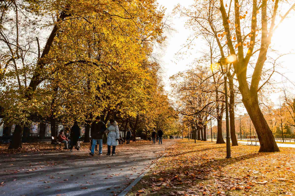 Usługi pogrzebowe na terenie Pragi Północ i Południe